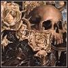 castlevania skull avatar